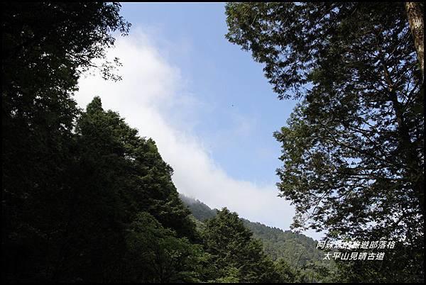 太平山見晴古道16.JPG