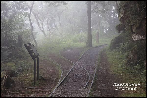太平山見晴古道39.JPG