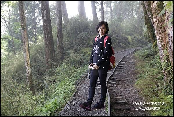 太平山見晴古道41.JPG