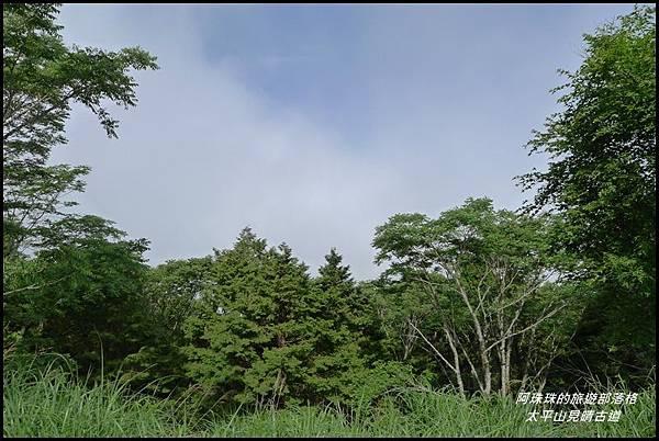 太平山見晴古道43.JPG