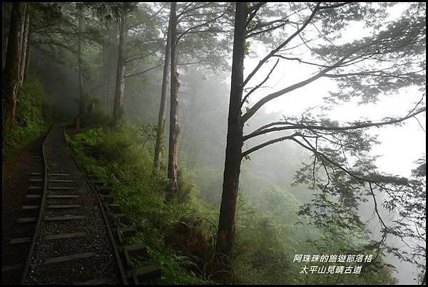 太平山見晴古道48.JPG