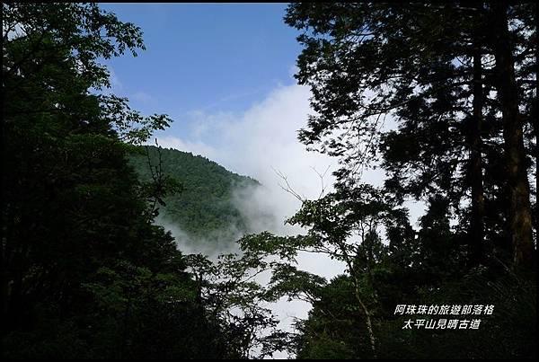 太平山見晴古道52.JPG