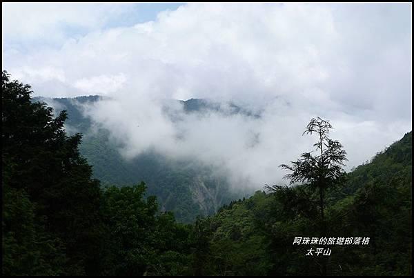 太平山見晴古道73.JPG