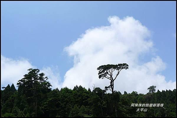 太平山見晴古道74.JPG