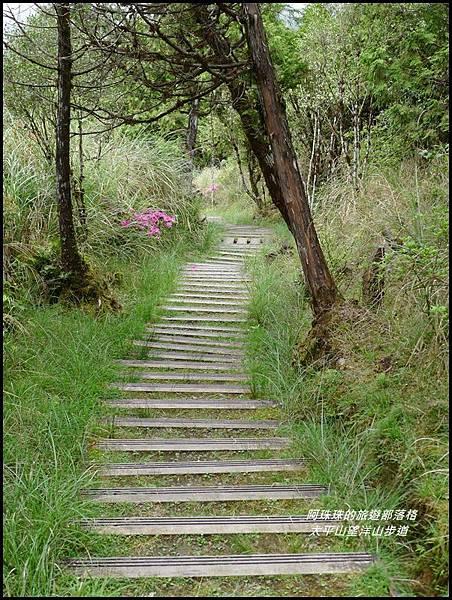 太平山望洋山步道17.JPG