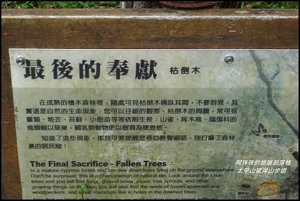 太平山望洋山步道34.JPG