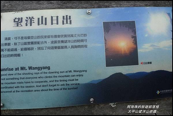 太平山望洋山步道44.JPG