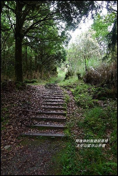 太平山望洋山步道49.JPG