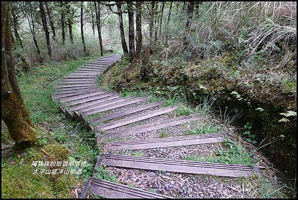太平山望洋山步道59.JPG