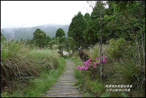 太平山望洋山步道60.JPG