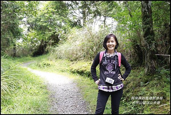 太平山望洋山步道67.JPG