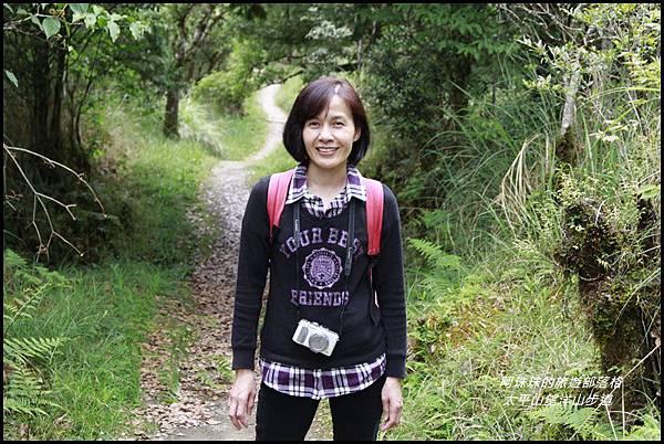 太平山望洋山步道69.JPG