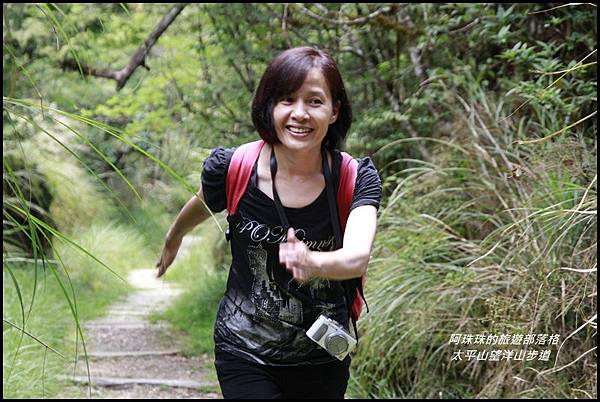 太平山望洋山步道75.JPG