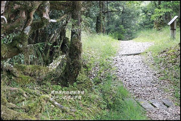 太平山望洋山步道78.JPG