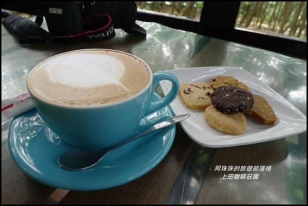 上田咖啡莊園27.JPG