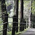 杉林溪10.JPG
