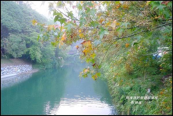 杉林溪81.JPG