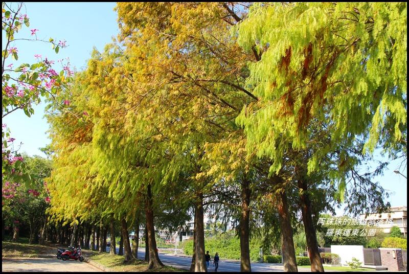 羅東運東公園18.JPG