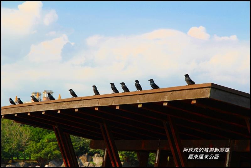 羅東運東公園23.JPG