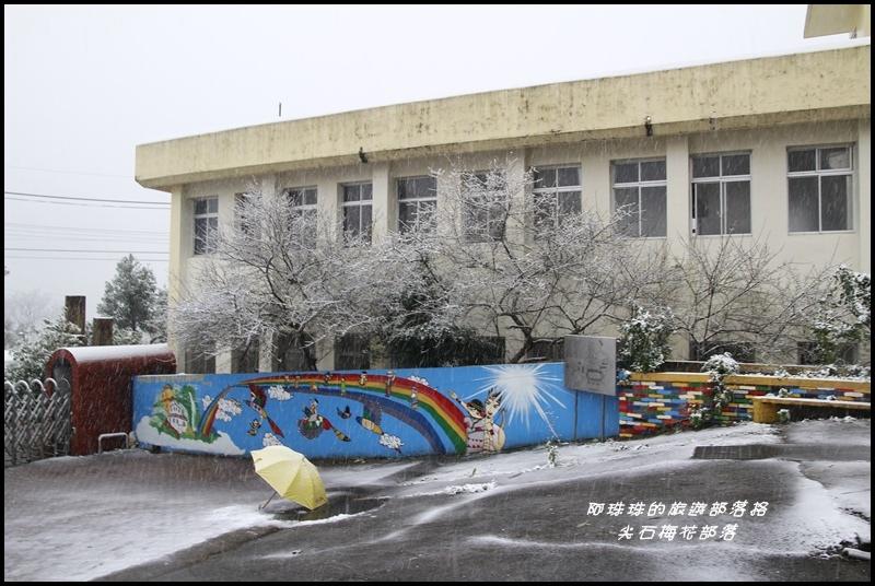 尖石梅花部落5.JPG
