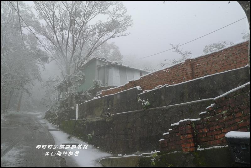 尖石梅花部落36.JPG