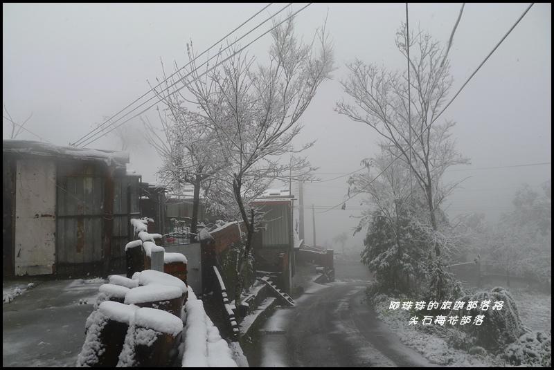 尖石梅花部落37.JPG