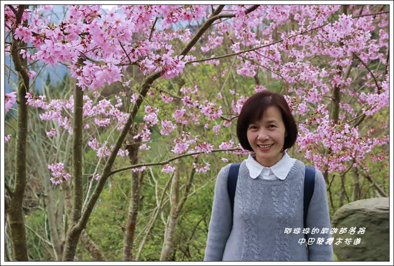中巴陵櫻木花道13.JPG