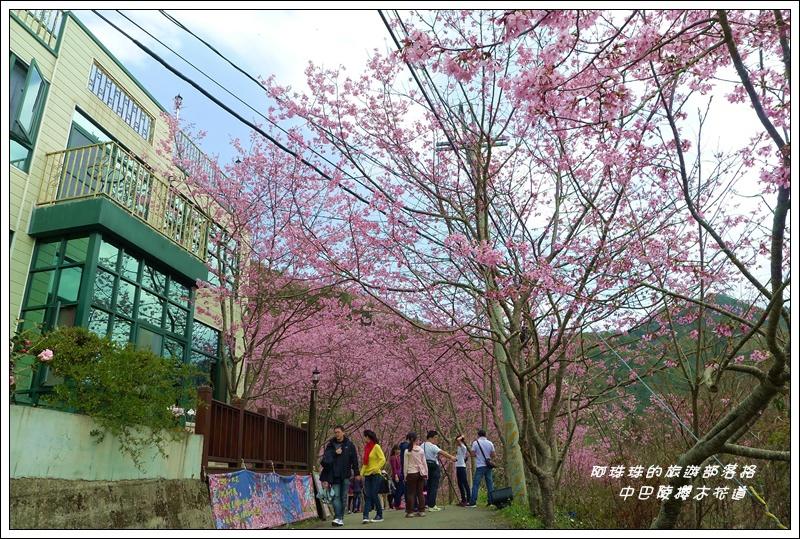 中巴陵櫻木花道20.JPG
