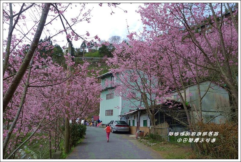 中巴陵櫻木花道26.JPG