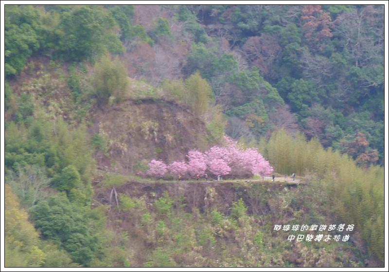 中巴陵櫻木花道29.JPG