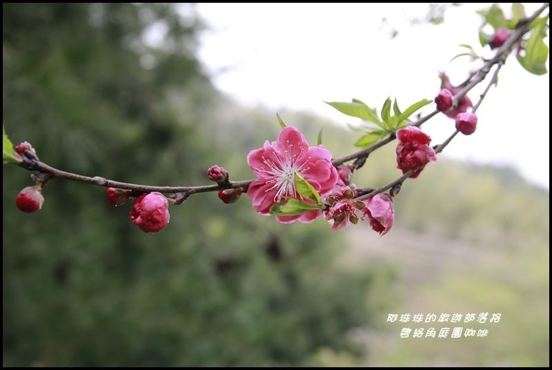 碧絡角庭園咖啡9.JPG