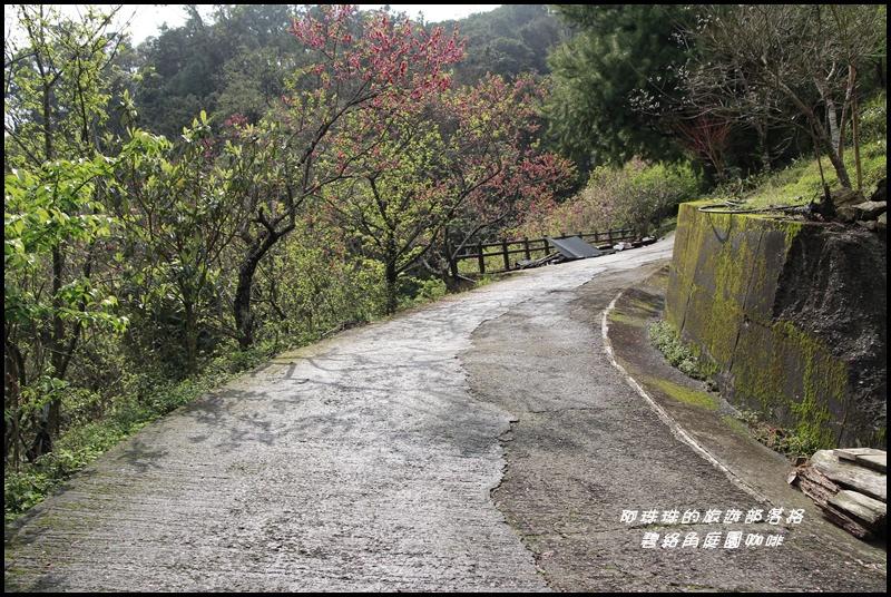 碧絡角庭園咖啡10.JPG