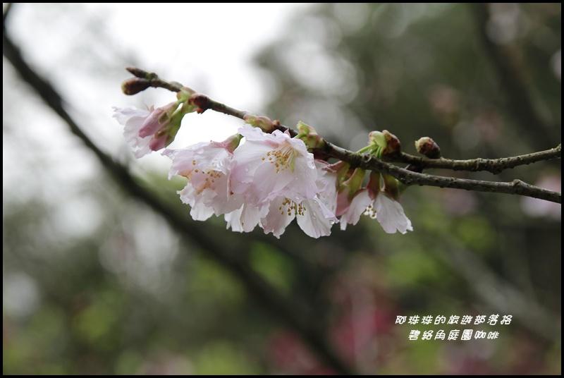 碧絡角庭園咖啡21.JPG