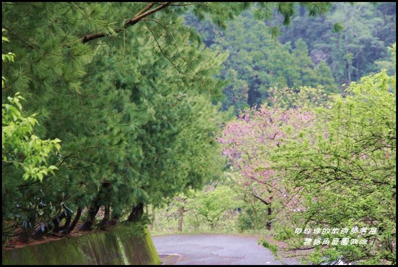 碧絡角庭園咖啡23.JPG