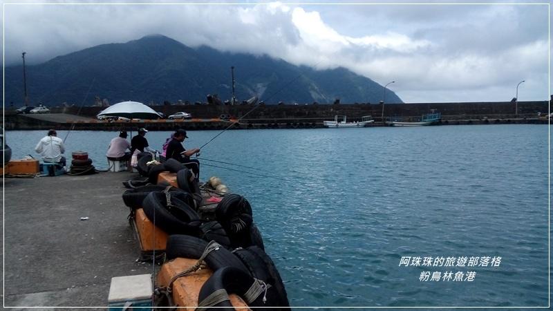 粉鳥林魚港1.jpg