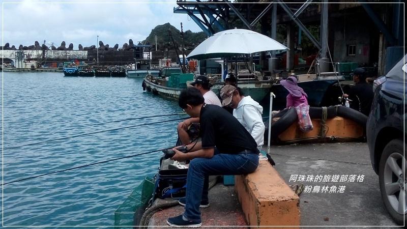 粉鳥林魚港3.jpg