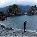 粉鳥林魚港6.jpg