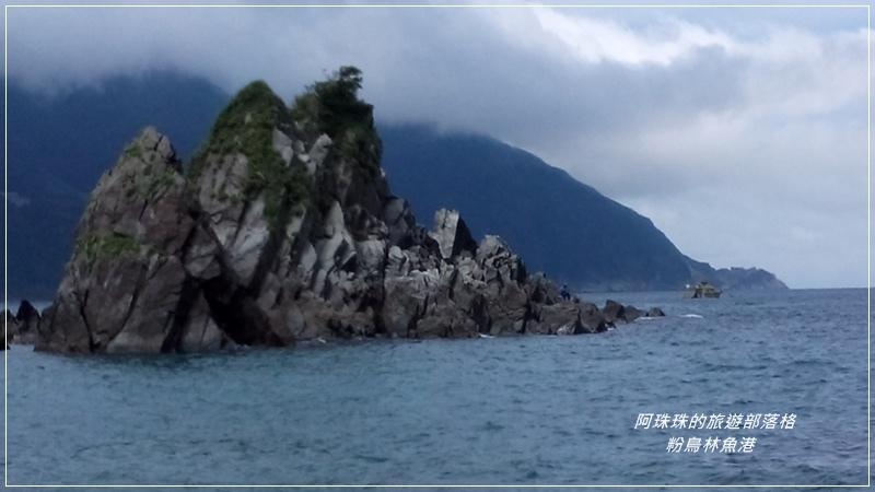 粉鳥林魚港8.jpg