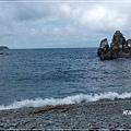 粉鳥林魚港10.jpg