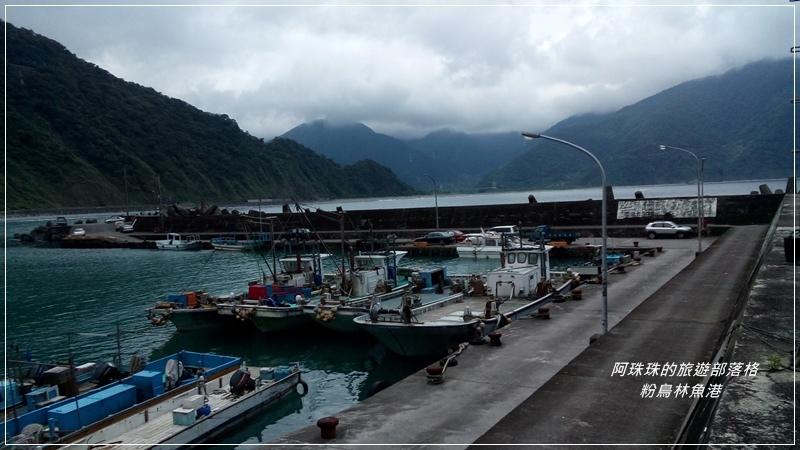 粉鳥林魚港13.jpg