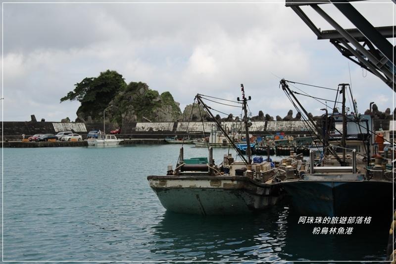 粉鳥林魚港17.JPG