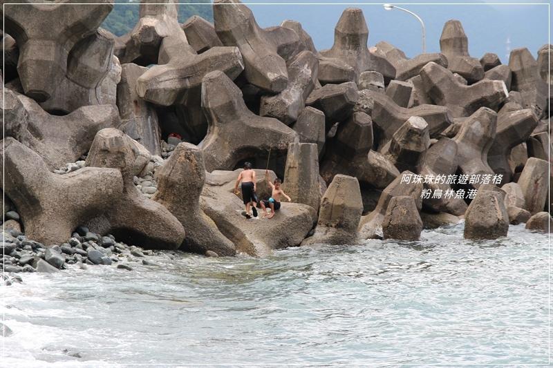 粉鳥林魚港21.JPG