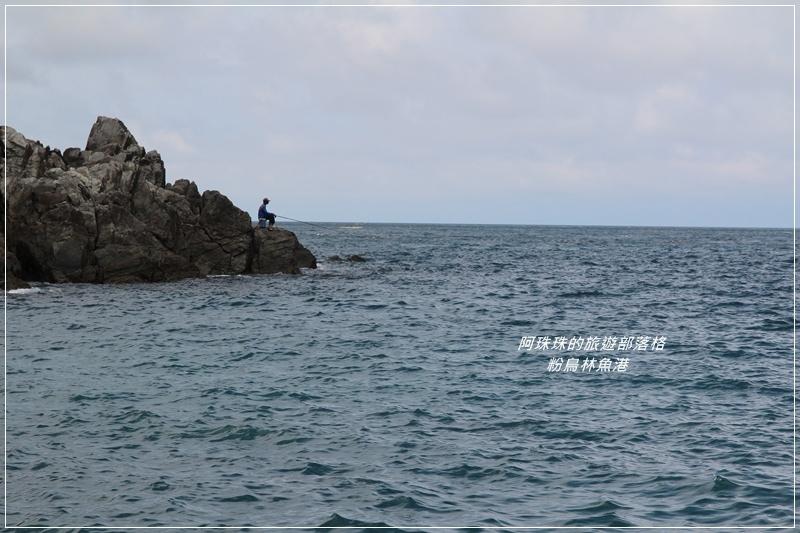 粉鳥林魚港23.JPG