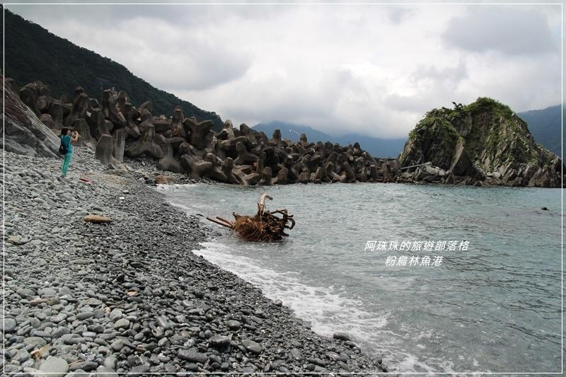 粉鳥林魚港22.JPG