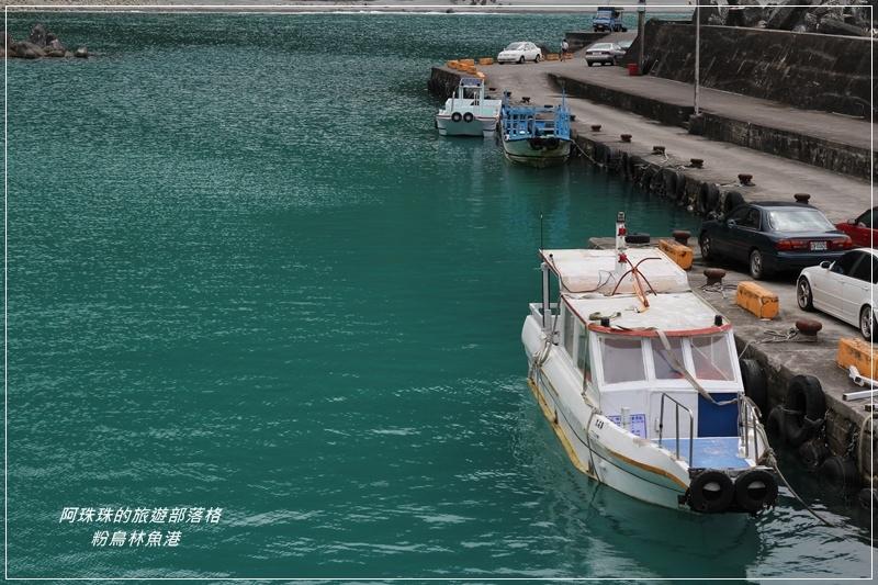 粉鳥林魚港26.JPG