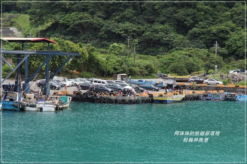 粉鳥林魚港27.JPG