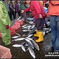 粉鳥林魚港44.JPG
