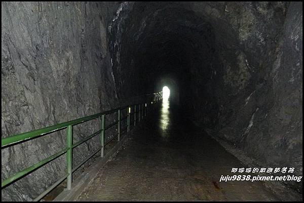 白楊步道8.JPG