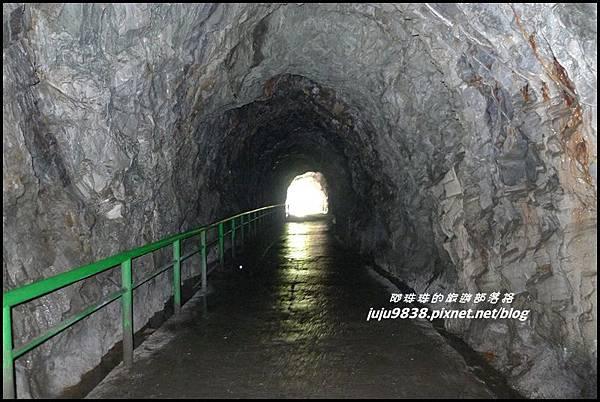 白楊步道16.JPG