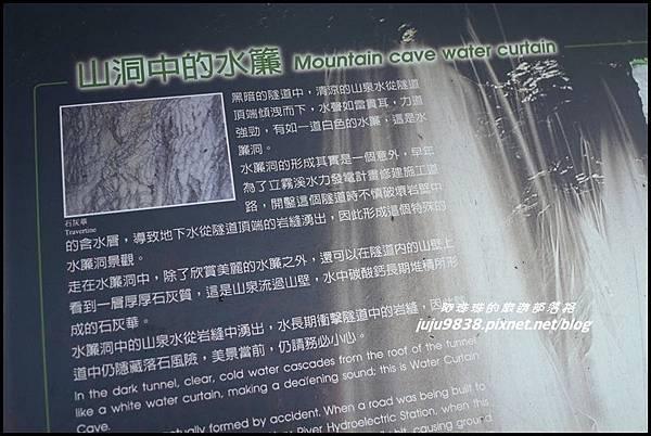 白楊步道38.JPG